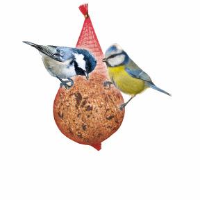 zimná ponuka pre ptáky -15 %