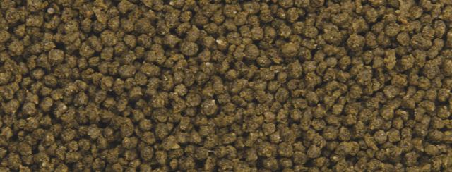 Dajana Guppy soft pellets