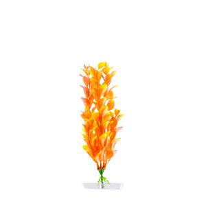 JK Akvarijná rastlina Orange Ludwigia 18-21 cm