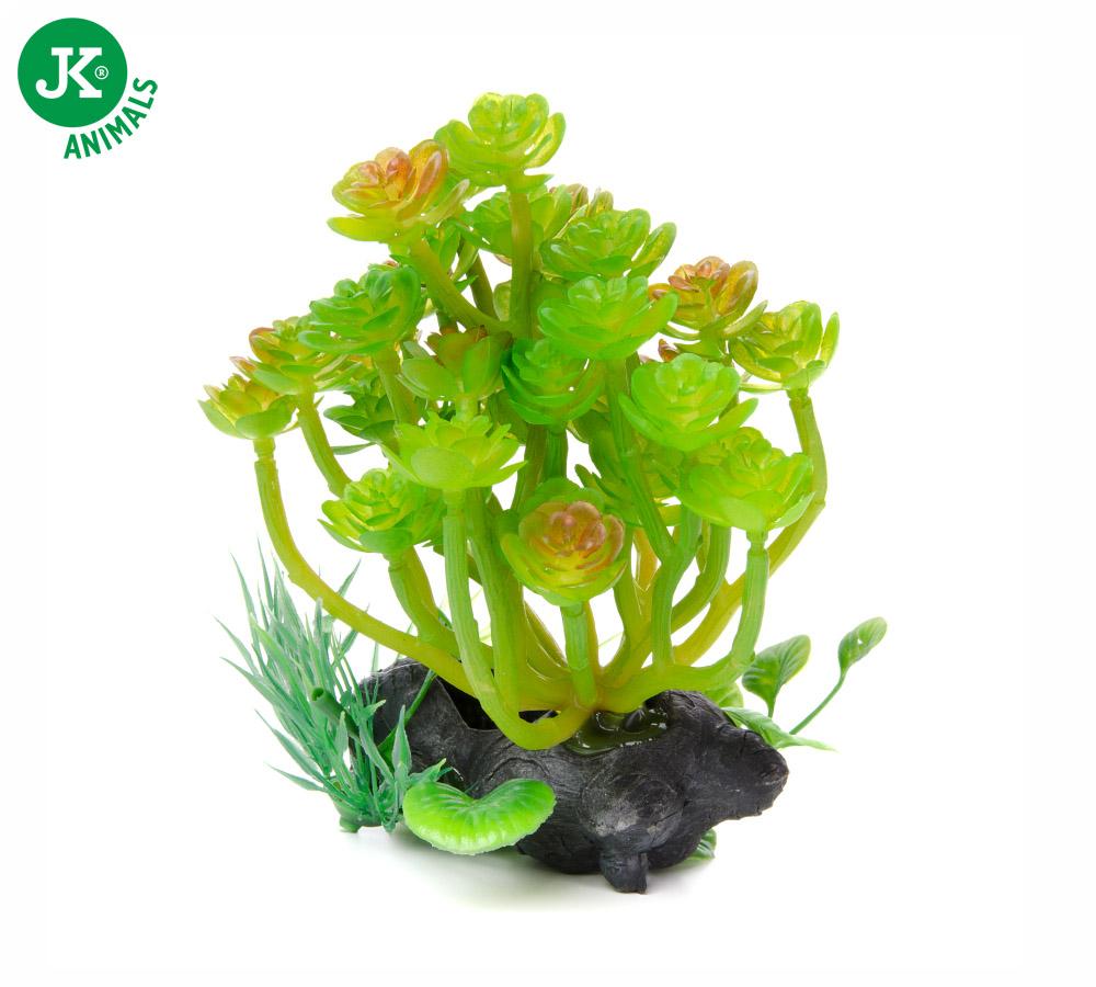 JK ANIMALS Akvarijná rastlinka Kameň strednej | © copyright jk animals, všetky práva vyhradené
