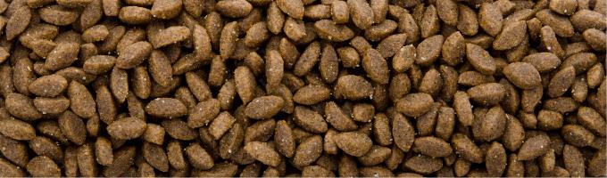 Sam's Field Cat Delicious Wild, superprémiové granule s divočinou – kompletné krmivo pre maškrtné mačky