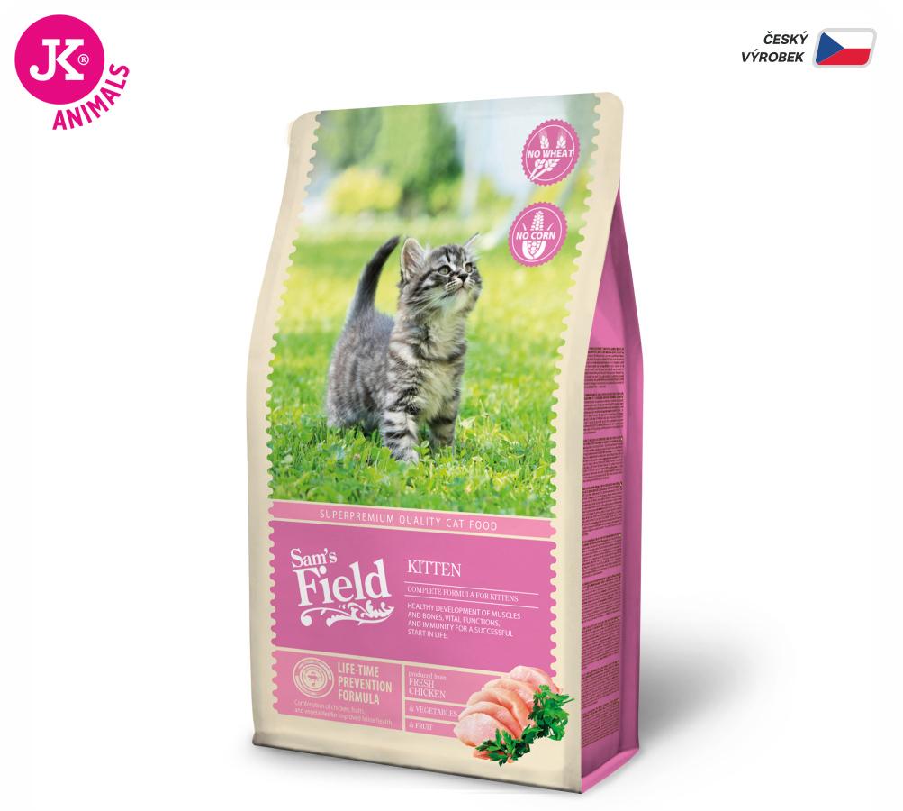 Sam 's Field Cat Kitten | © copyright jk animals, všetky práva vyhradené