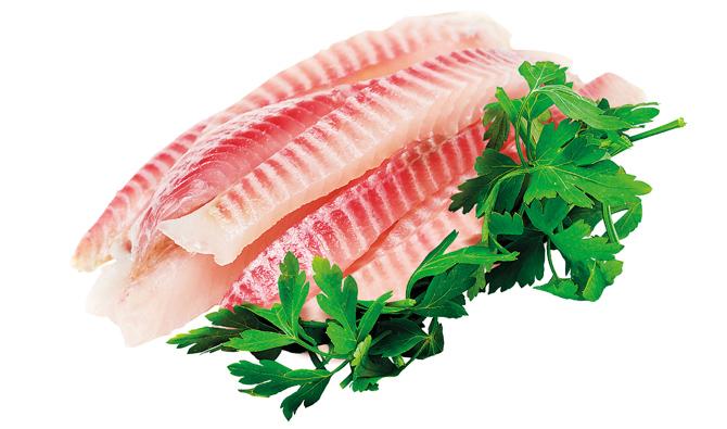 biela ryba
