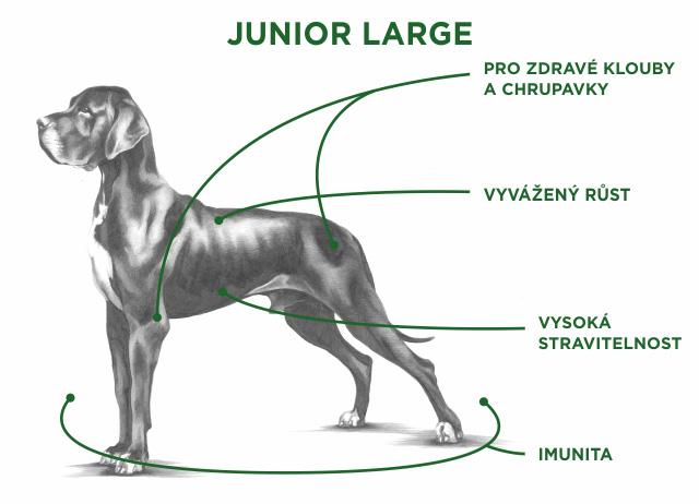 junior large tabuľka