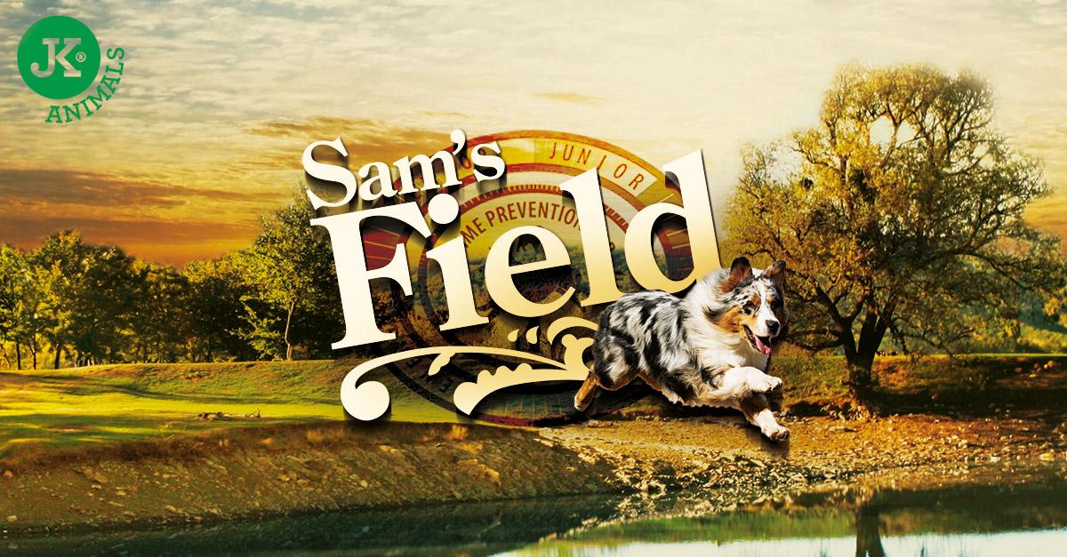 Sam's Field Junior Large Chicken & Potato | © copyright jk animals, všetky práva vyhradené