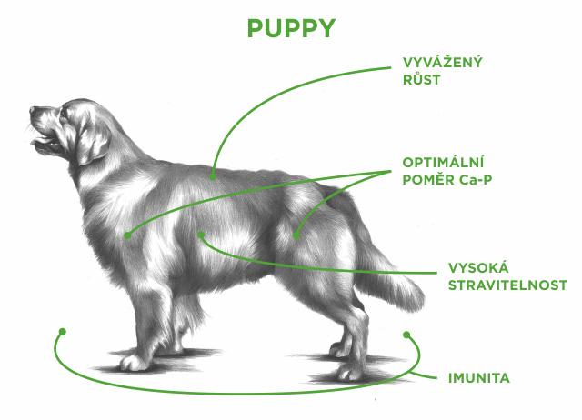puppy tabuľka
