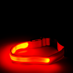 JK Nylonový LED obojok M červený 2,5 cm/40-48 cm