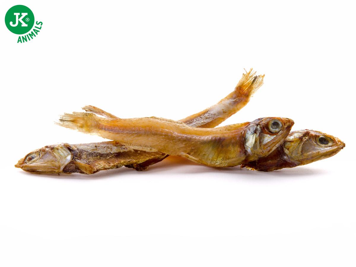 JK ANIMALS Meat Snack Small Anchovy Fish, masová maškrta | © copyright jk animals, všetky práva vyhradené