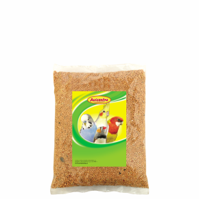 Avicentra - žlté proso